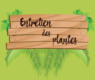 Banner-Entretien-des-plantes-03